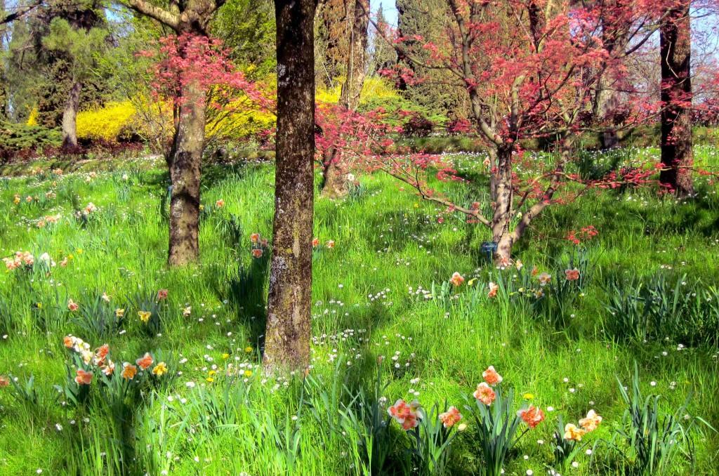Natura Rigogliosa al Parco Giardino Sigurtà
