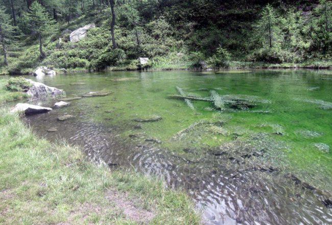 lago delle streghe crampiolo