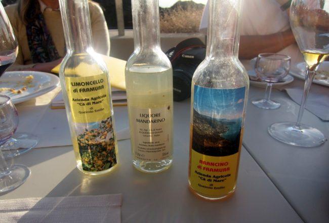 Liquori tipici dell'Az. Agricola ca' di Mare.