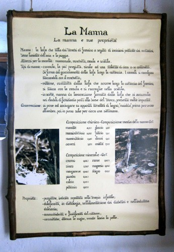 museo della manna riserva dello Zingaro