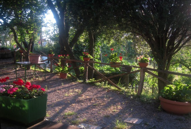giardino del ristorante