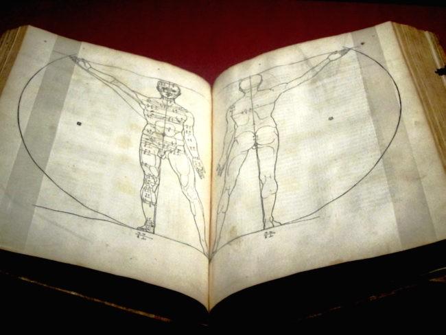 Studi di Dürer sulle proporzioni del corpo umano