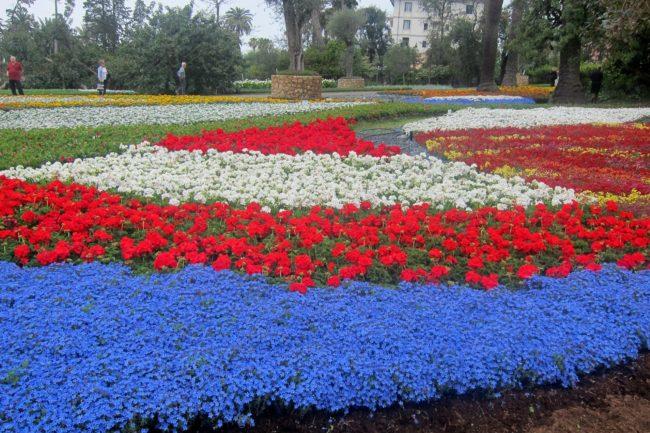 Tappeti di fiori a Euroflora2018