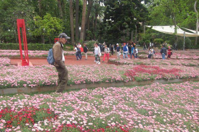 Tra i fiori di Euroflora2018