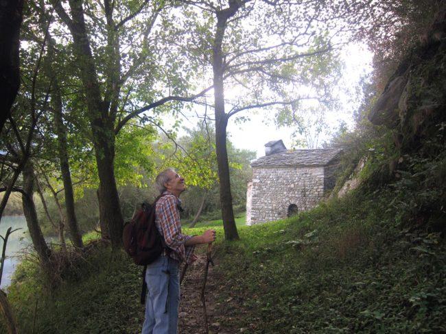 A San Fedelino attraverso il bosco