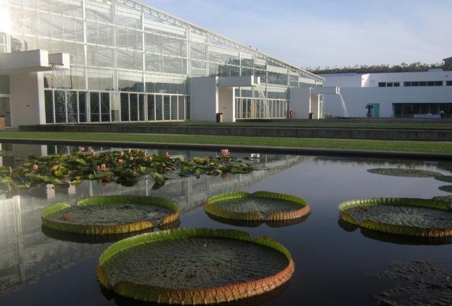giardino biodiversità padova