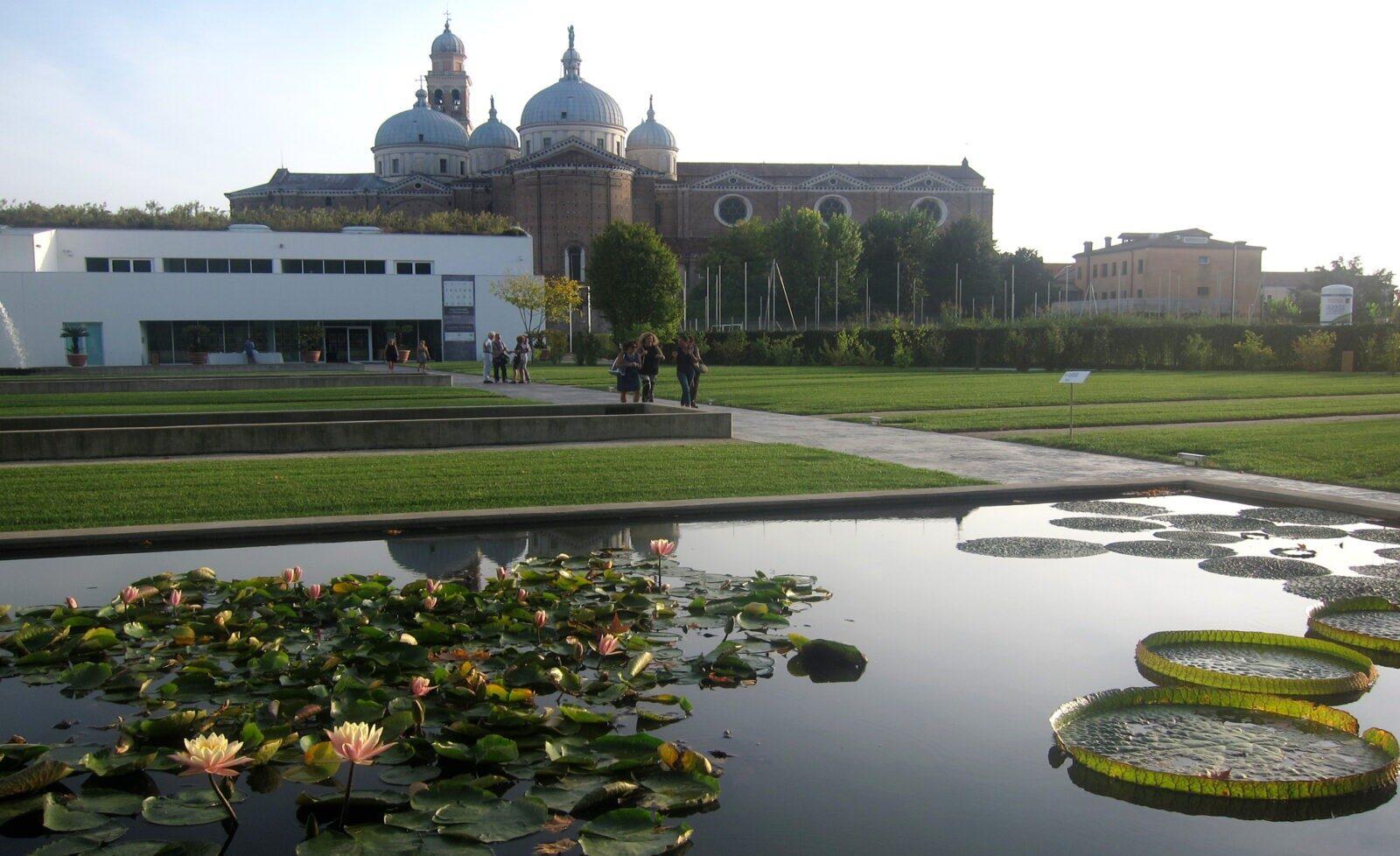 """Come Recintare Un Giardino orto botanico di padova, un """"giardino del paradiso"""
