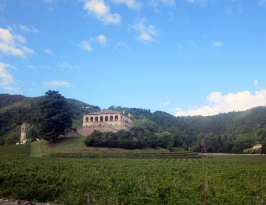 villa vescovi