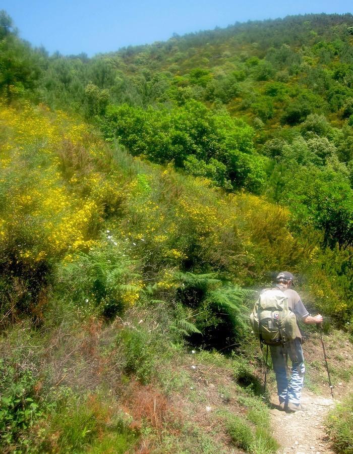 trekking vagabondiinitalia